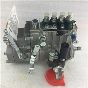 fuel Injection Pump BHF4PM10001 4PL203 40154668