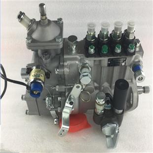 Fuel pump BHF4PM100003 4PL220-85-1700​ Injection System​